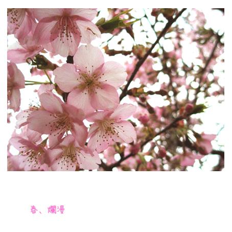 f0192530_23344394.jpg