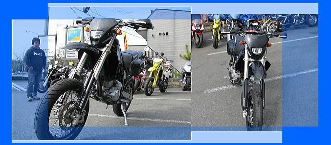 Dトラッカー&セロー225WE_f0178858_14582693.jpg