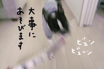 f0170072_12493439.jpg