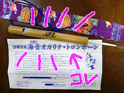 ミゾレとウグイス_b0019611_2322068.jpg