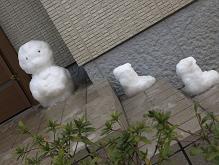 雪_a0100923_1393857.jpg