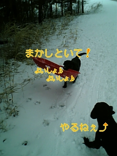 f0148927_17551366.jpg