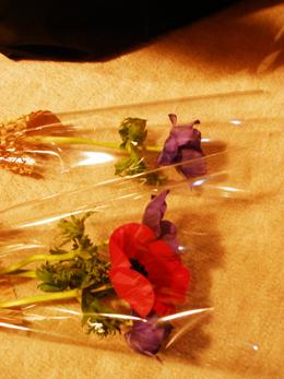 お花がいっぱい・・・お疲れさまでした。_e0068732_225793.jpg