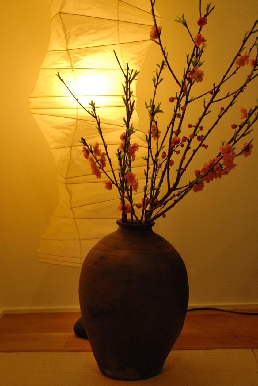 桃と禅の関係♪_c0156749_2226405.jpg