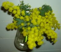 春です!_e0112378_14262261.jpg