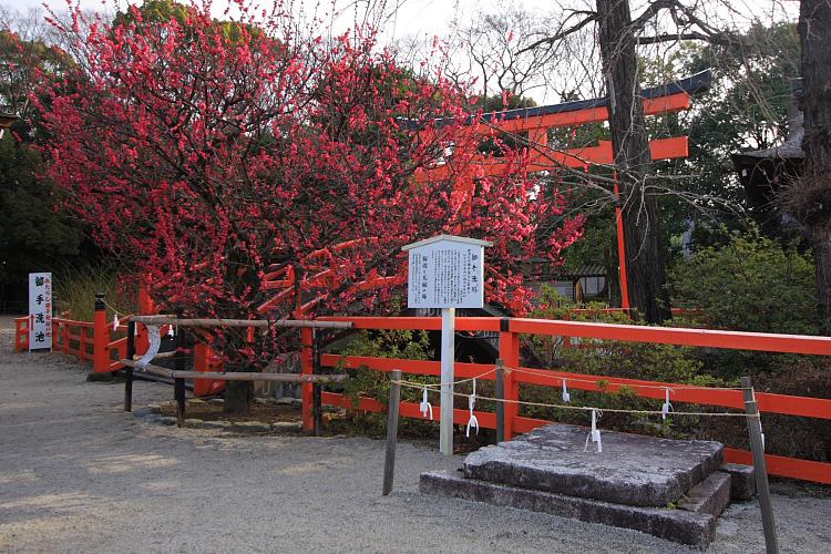 下鴨神社_e0051888_1235055.jpg