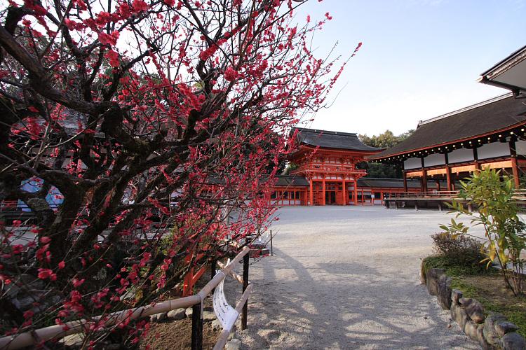 下鴨神社_e0051888_1262299.jpg