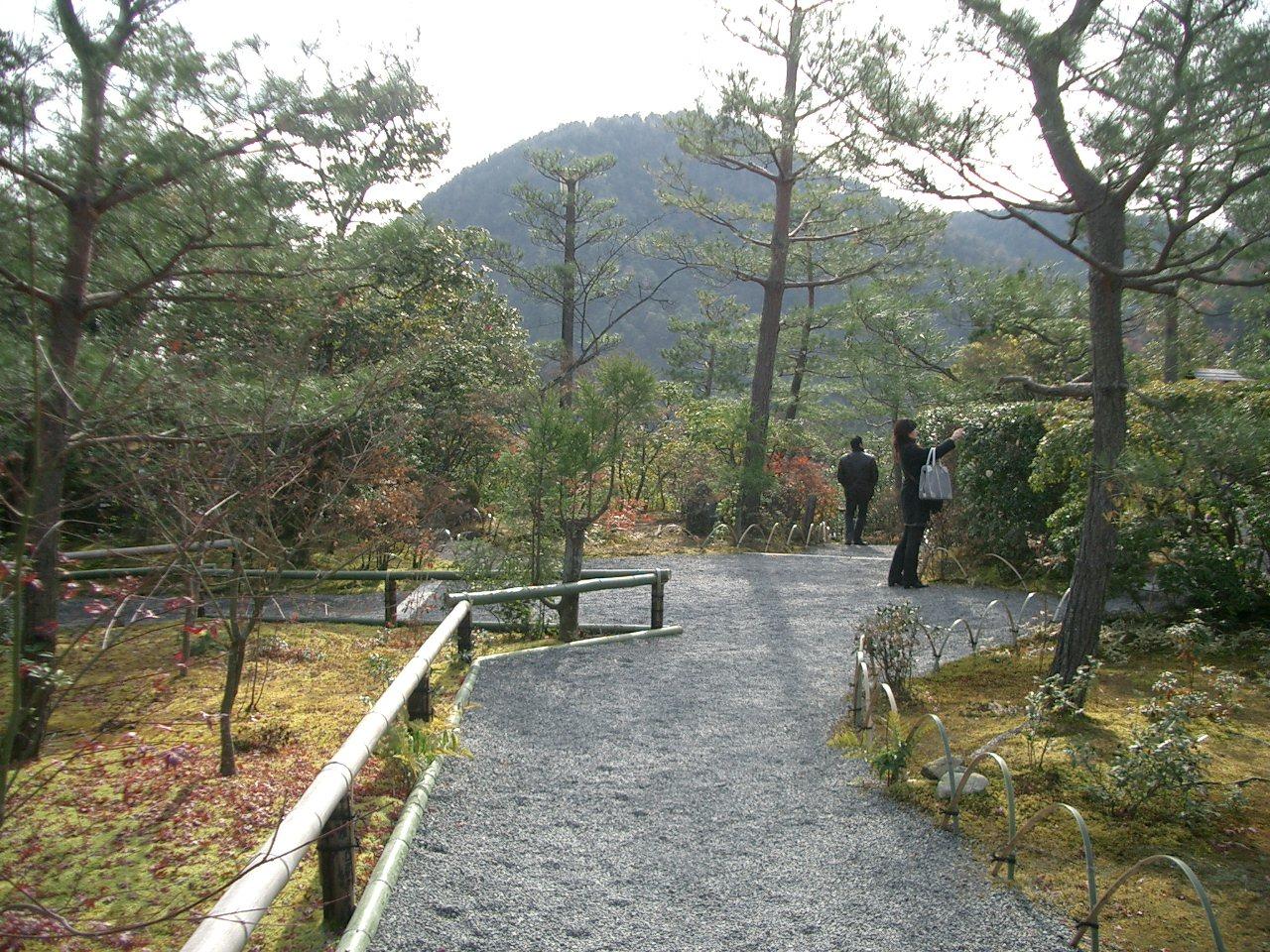 冬の京都_f0147666_1659376.jpg