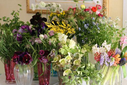 Fleurs printanieres_f0127281_2333529.jpg