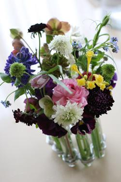 Fleurs printanieres_f0127281_23363729.jpg