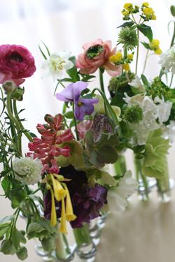 Fleurs printanieres_f0127281_23365052.jpg