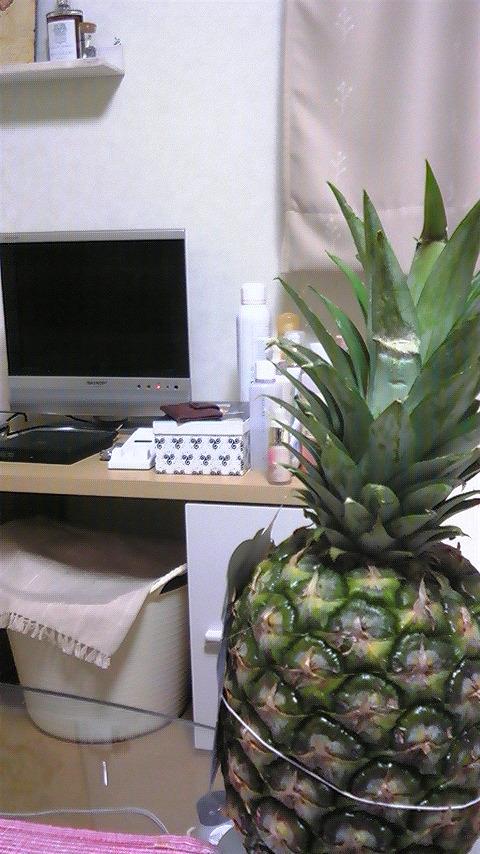部屋とパイナップルと私。_f0195703_16434471.jpg