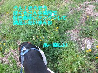 d0104209_2152326.jpg