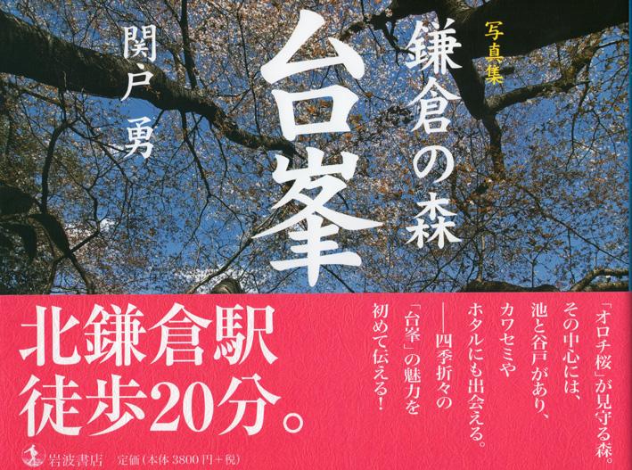 09年北鎌倉ウォッチング―探訪!幻の大蛇ザクラ―は4・4_c0014967_1055025.jpg