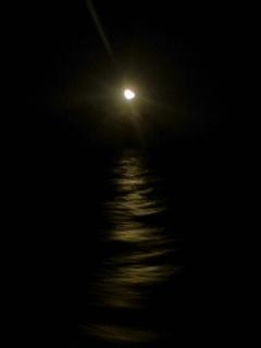 お月様_f0144003_22352945.jpg