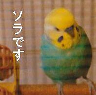 f0196665_2354227.jpg