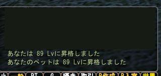d0089810_16383091.jpg