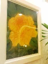 黄色のバラ_c0187025_0235062.jpg