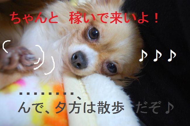b0112758_2133942.jpg