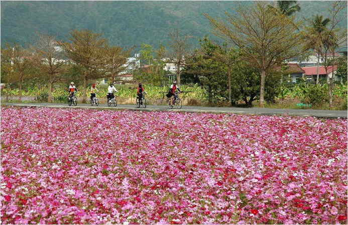■春爛漫~美濃_e0094583_827331.jpg