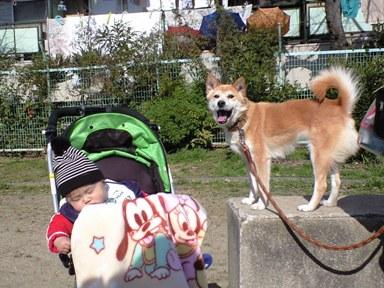 お散歩~お散歩~~♪_e0123286_10373599.jpg
