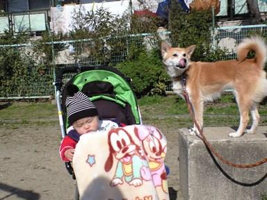 お散歩~お散歩~~♪_e0123286_10502575.jpg
