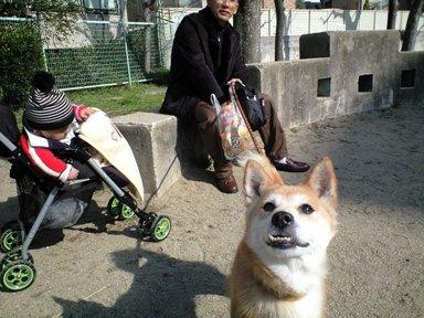 お散歩~お散歩~~♪_e0123286_10502675.jpg