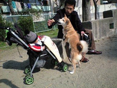お散歩~お散歩~~♪_e0123286_10505191.jpg
