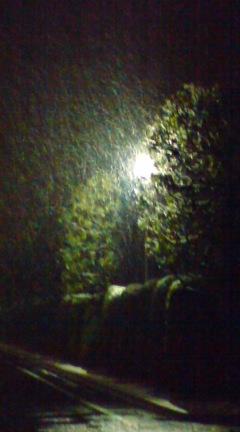 雪です_a0024690_2026268.jpg