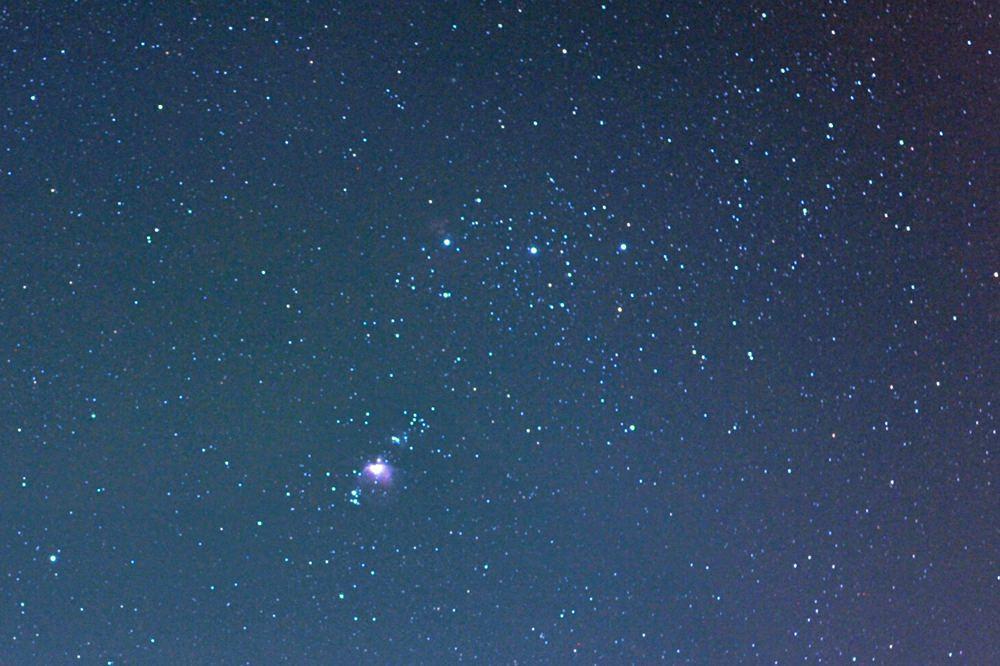 カワセミ・ホバリング/ルーリン彗星_b0024798_11134973.jpg