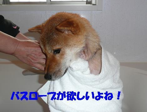 f0121712_18411390.jpg