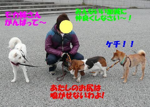 f0121712_18544868.jpg