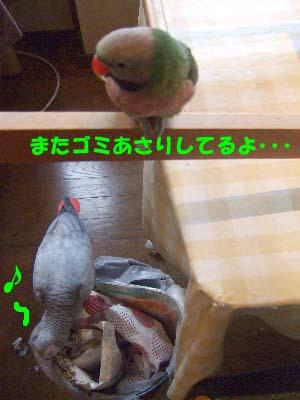 c0133013_20201789.jpg