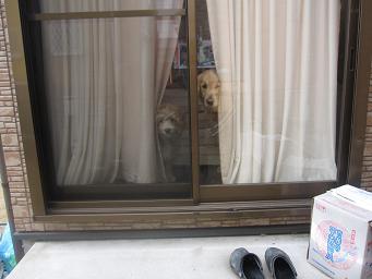 3月4日 水曜日 女子千円の日なり~_e0136815_21314292.jpg