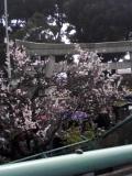 090302 箱根に来てます☆_f0164842_0414251.jpg