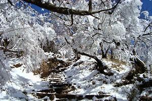 雪の表丹沢_c0171849_17272139.jpg