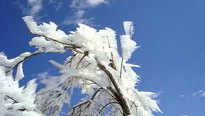 雪の表丹沢_c0171849_1727913.jpg