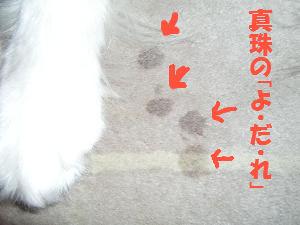 f0087779_19492436.jpg
