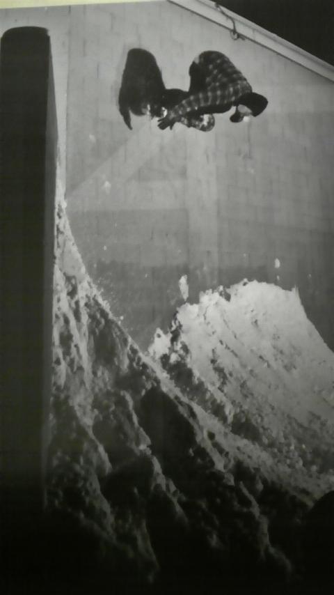 f0100091_19481694.jpg