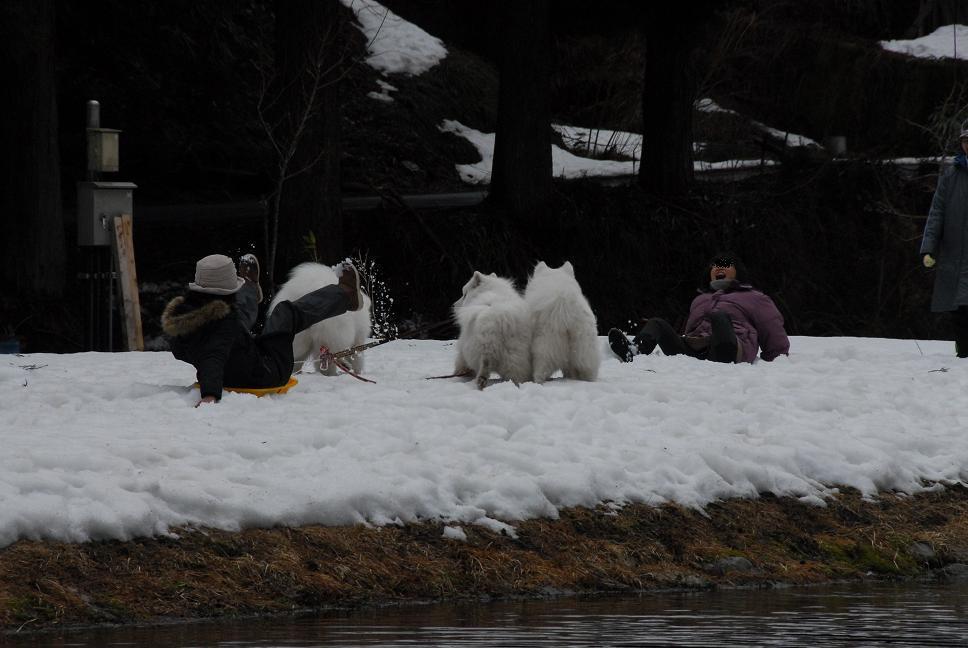 雪遊びに行ってきました♪  んまいもん&ソリ遊び編_a0049296_6454778.jpg
