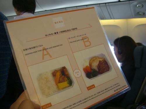 ハワイNOV2008 旅日記28(NH1051便で東京へ)_f0059796_1595091.jpg