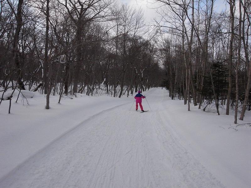 歩くスキー_f0138096_1015283.jpg