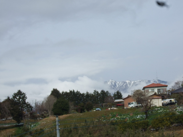 雪の中ジャガイモの植え付け......._b0137932_18343037.jpg