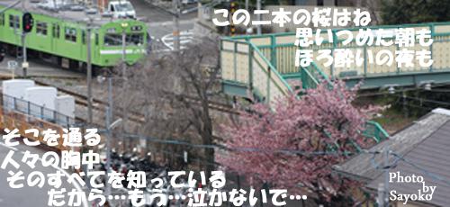 c0127335_17214348.jpg