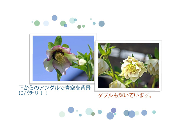 c0134762_15213632.jpg