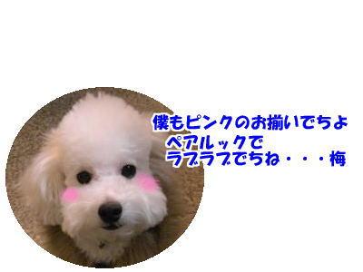 d0020869_13545891.jpg