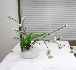 吉野桜を使って自由花_c0165824_8323988.jpg