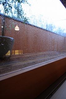 雨でしたね。_c0178231_1850925.jpg