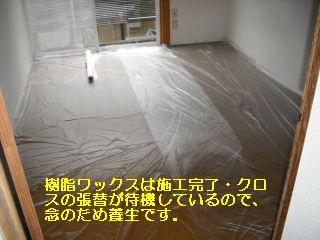 f0031037_19134859.jpg