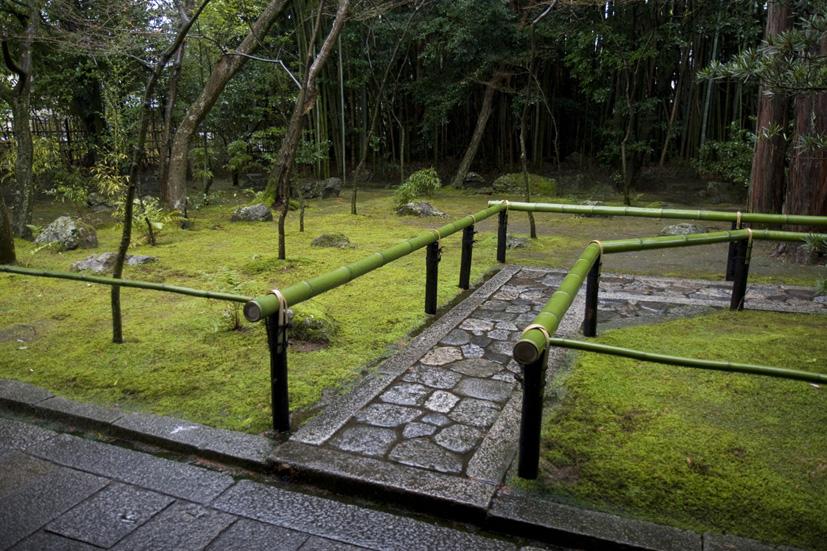 冬の京都 大徳寺 高桐院 楓と苔 _e0127948_1936651.jpg
